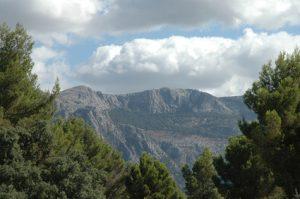 Radvermietung Mallorca