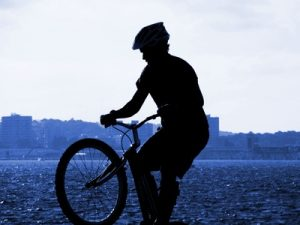Rennräder, Trekking Bikes und E-Bikes auf dem Vormarsch